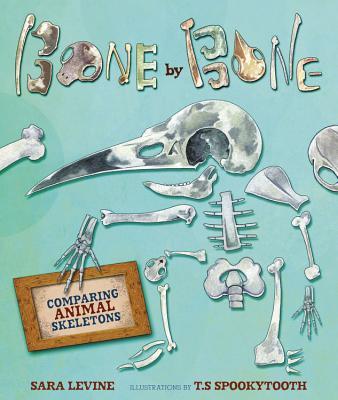 Bone by Bone By Levine, Sara/ Spookytooth, T.s. (ILT)